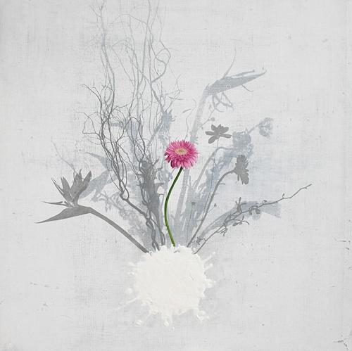 Flowerno-21