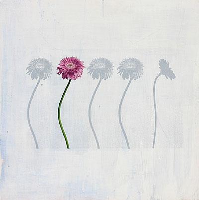 pink-flower2