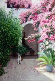 パティオの花見猫hp