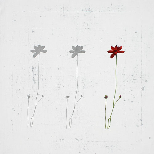 flor-no18