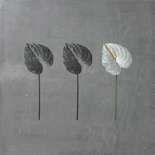 flor-no19