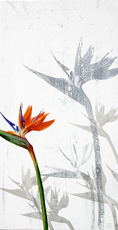 flor-no28
