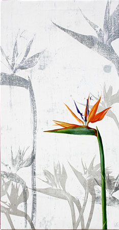 flor-no30