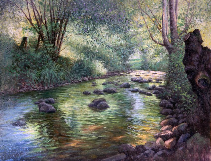 Arroyo de Asturias : 小川のきらめき